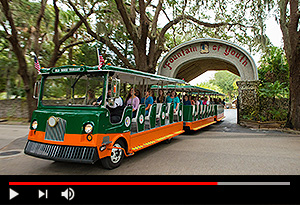 video screen showing trolley driving through fountain of youth arched tunnel